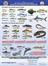 Avlanabilir Balık Boyları
